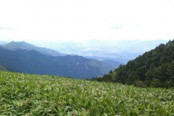 On your left...Gifu Prefecture