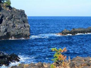 Потрясающий вид на побережье Дзёгасаки