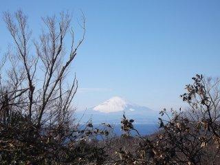 Lors de l'ascension du Mont Ogusu sur la péninsule de Miura