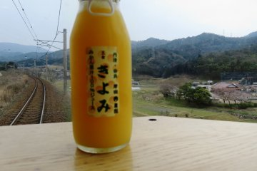 Try local fruits like this kiyomi citrus drink on the way to Amanohashidate.