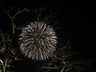 An exploding firework looks like stars in the night sky.