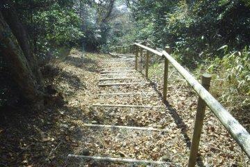 Takaosan trail
