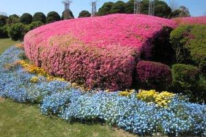 ทางเดินสวนดอกไม้ 3