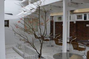 Kafe ini sangat terbuka. Foto ini diambil saat musim semi.