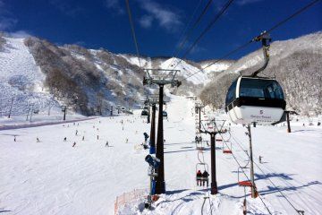 <p>A view from the ski lift.</p>