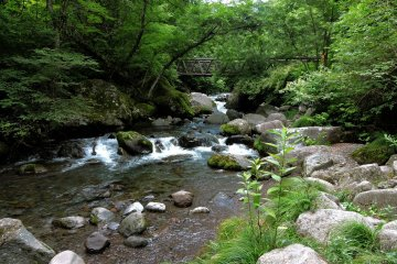 A bridge spans the Kawamata river