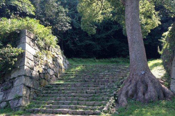 Лестница у подножия холма, начало пути