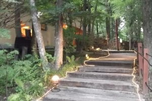 The path through the trees to the restaurant