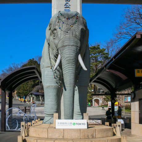 Visite du Parc Animalier de Tama