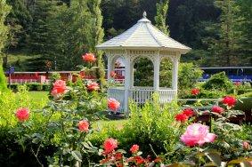 Um Jardim de Fadas na Cidade de Izu