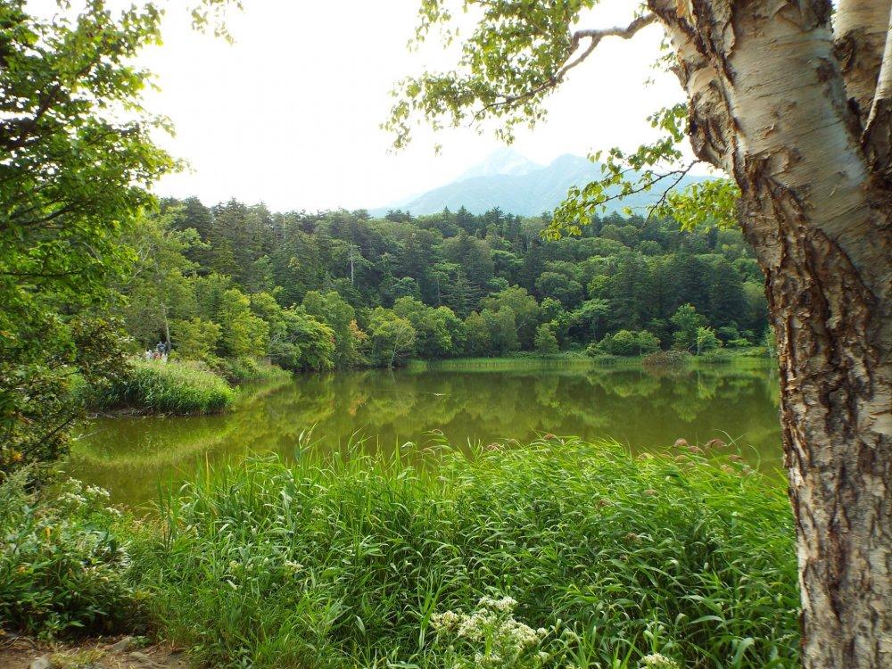 Otatomari Pond