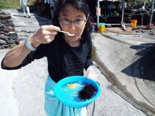 Enjoying fresh sea urchin