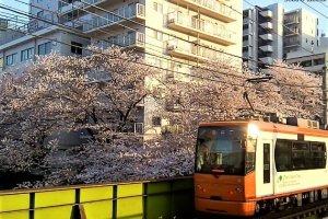 Tramway à Waseda