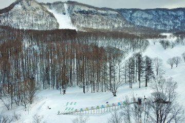 Ski slopes and, in the foreground, small hills for tubing/sledding beside one of the snow escalators