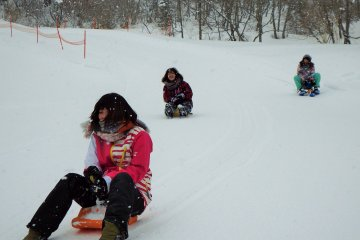 A variety of sleds can be ridden down a long, exciting course that runs parallel to the ski slopes.