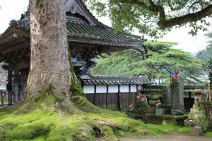 Hyogo Highlight: Daijoji temple grounds