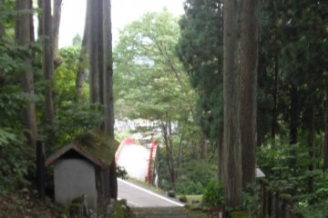 <p>Looking down the path to the bridge</p>