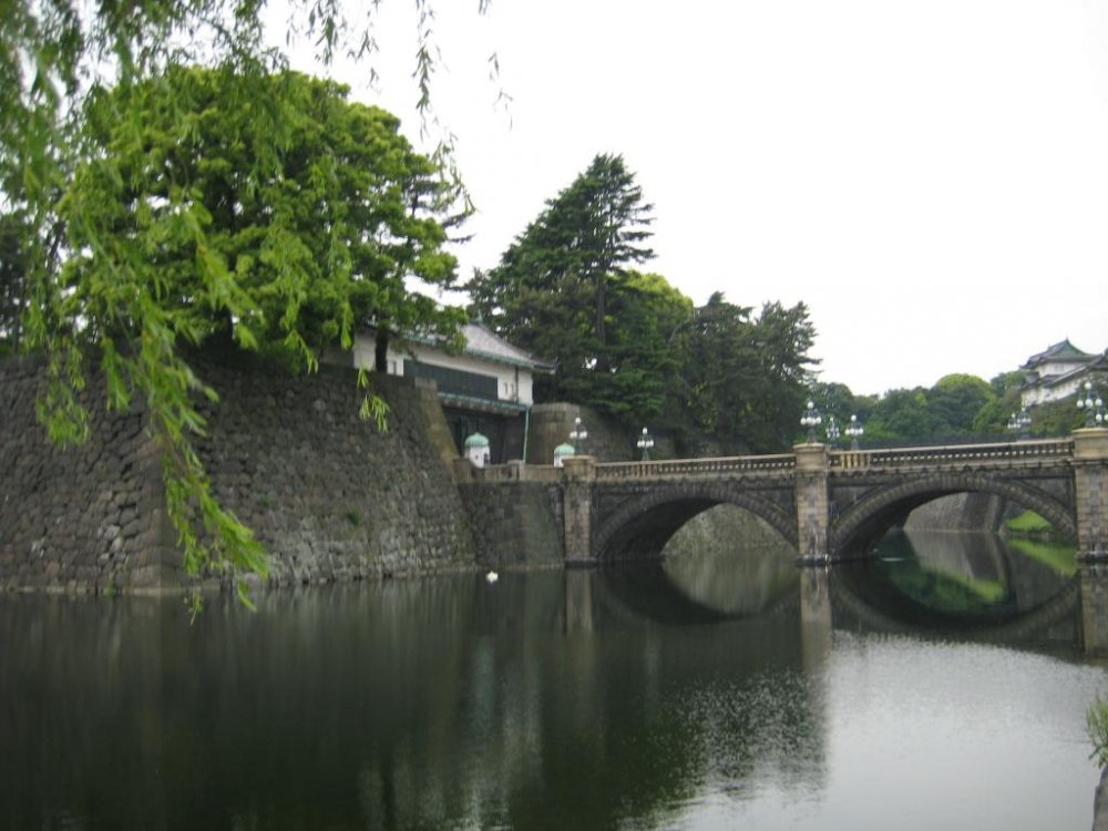 View of the bridge