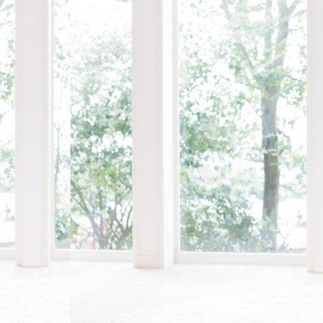 使用  Minon Amino Moist 护肤产品来保持美丽
