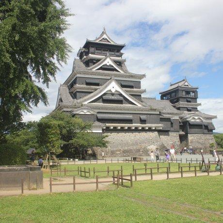 Summer in Kumamoto Castle