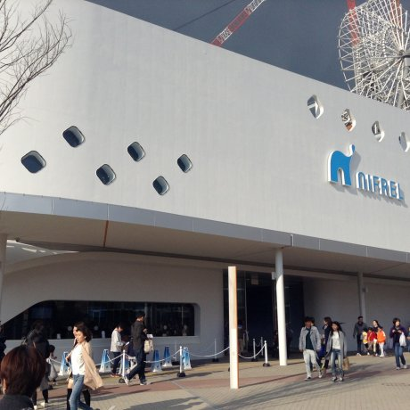Aquarium Nifrel de Expocity