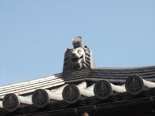 Mặt chú sư tử đang nhìn du khách từ phía trên