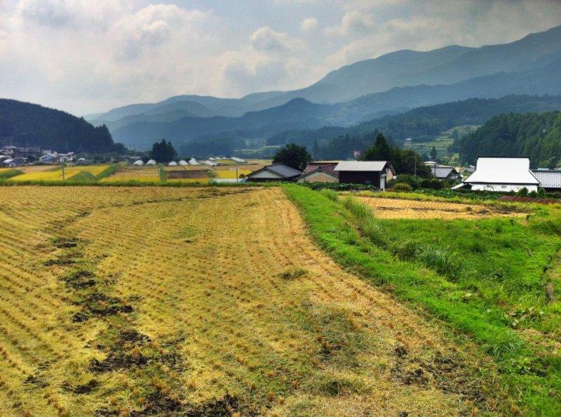 Typical scenery of Kuma Kōgen Highland