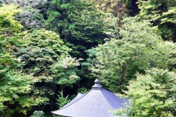 Weird and beautiful scenery at Furuiwaya