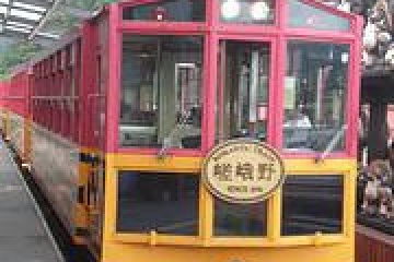 <p>Trolley Car or Train?</p>