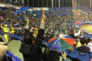 Swallows fans celebrating with their little umbrellas.