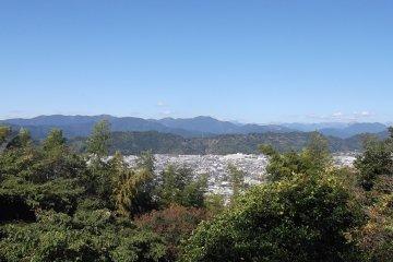 Hiking Yatsuyama in Shizuoka