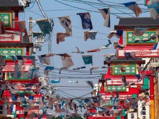 Celebrating international Korean heritage.