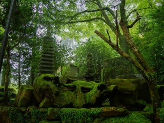 鶴林寺の庭園