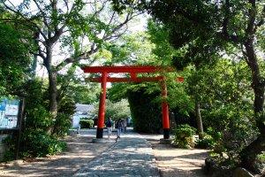 Torii Gate upon entrance