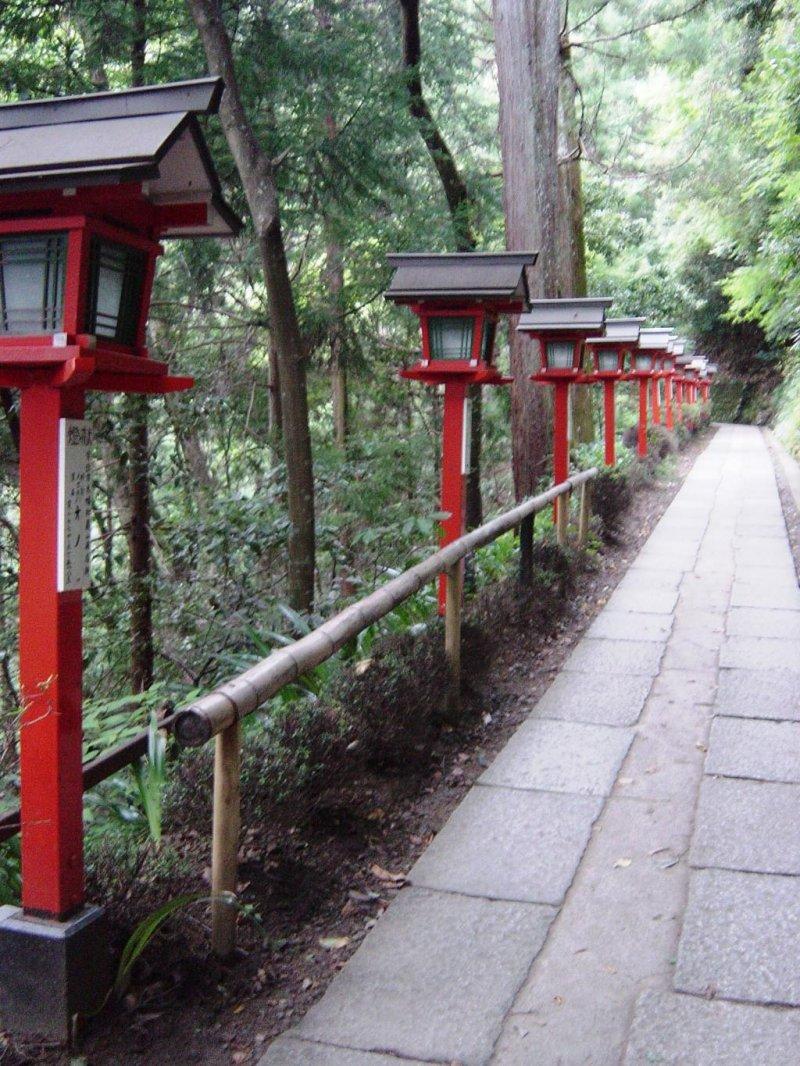 At the start of the Kurama-Kifune hiking trail lanterns line the path