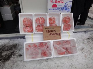 Snow Crabs at the Snow Festival