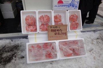 札幌雪祭典ー大通公園