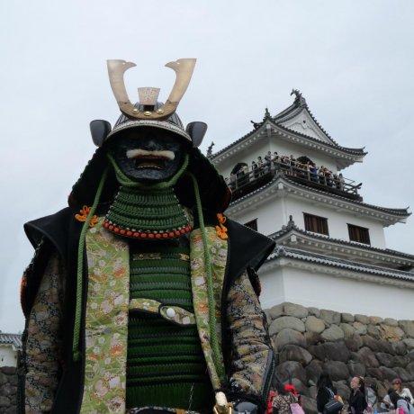 เทศกาล โอนิ คาจูโร ในชิโรอิชิ
