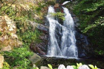 Mugo Waterfall
