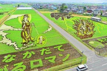 2012 design of Inakadate's rice art.