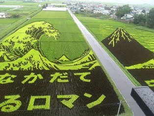 The Autumn Rice Field Art of Aomori