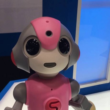 Robotics Expo in Tokyo