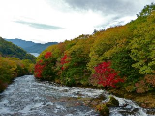 Le changement des couleurs commence le long de la rivière Yukawa