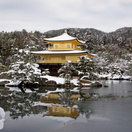 Kinkakuji Winter Scenery