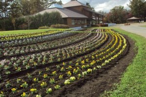 The gardens and farmland provide beautiful scenery for a stroll.