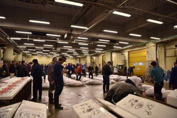 Tsukiji market at 4.30 am
