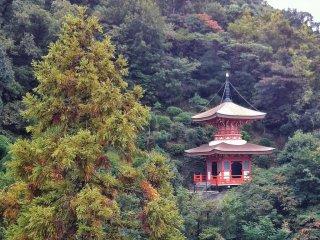 Еще одна пагода на территории Манган-дзи