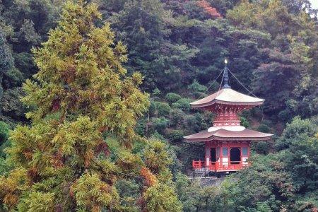 Храм Манган-дзи в Курэ