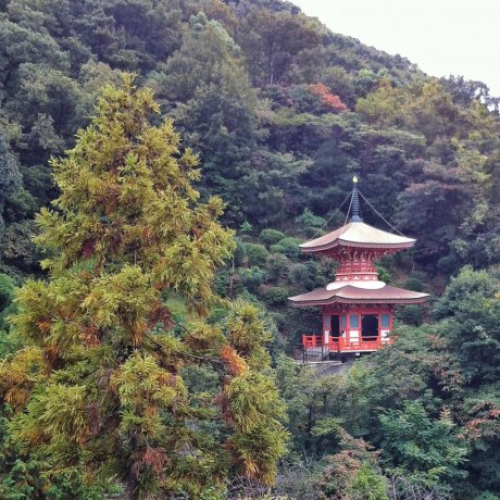 Mangan-ji Temple in Kure