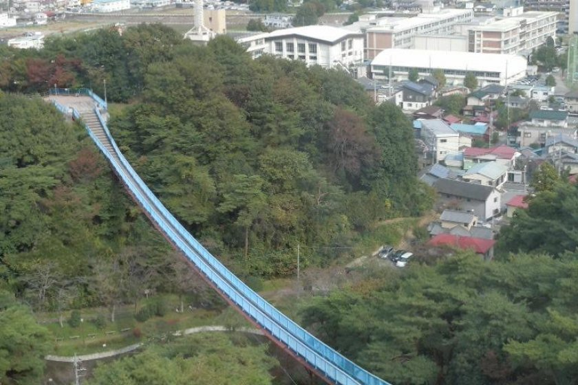 The suspension bridge, photographed from the tower